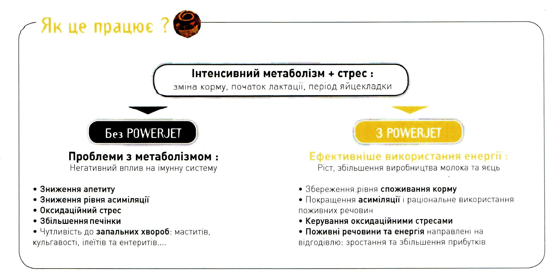 Кормова добавка Powerjet